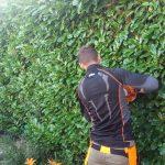 Rhuddlan hedge cutting